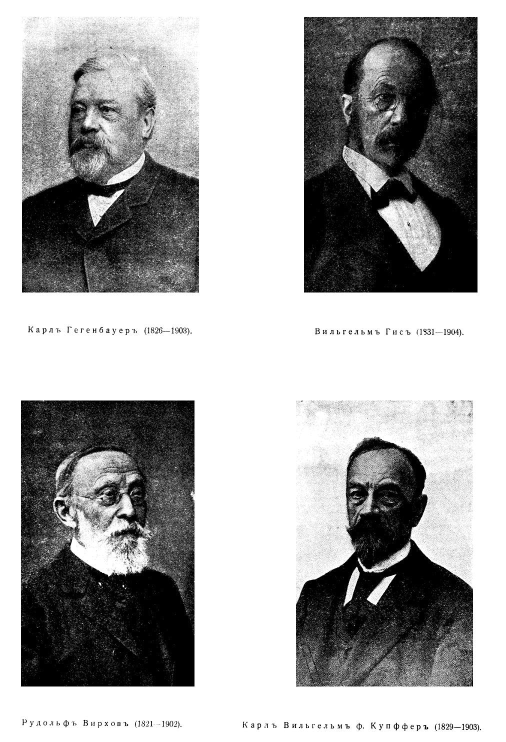 Історичний розвиток анатомії і її представники